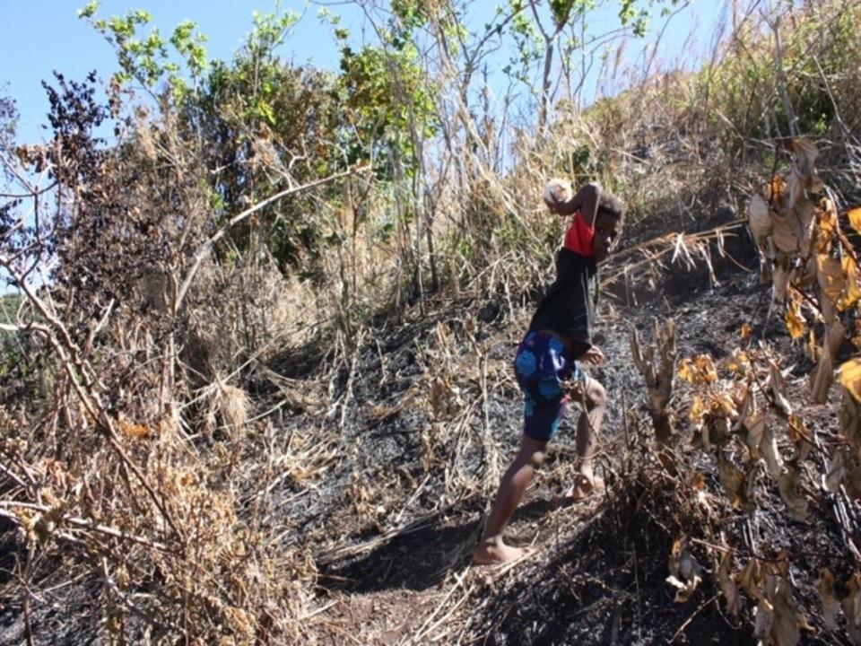 climate change in Vanuatu