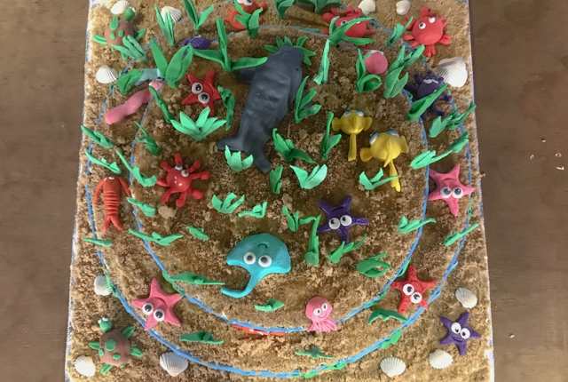 Seagrass meadow cake