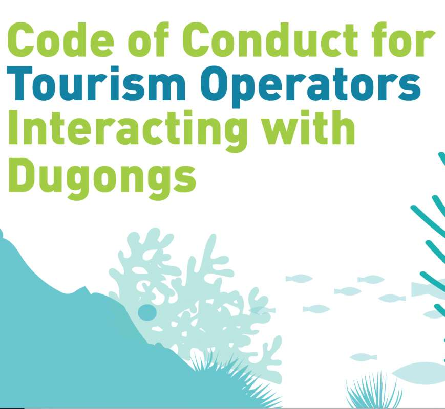Image for Code of conduct for tour operators interacting with dugongs